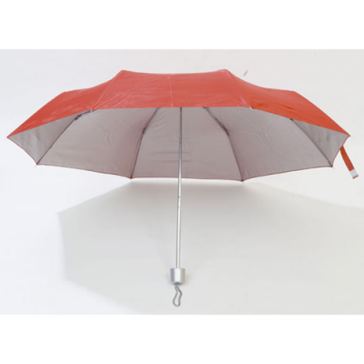 Image of Umbrella Susan